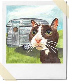 Tuxedo Cat, Vintage Camper, watercolour by Diedre Wicks / Water in my Paint. See this print in her shop on http://www.etsy.com/listing/78476628/watercolor-cat-print-tuxedo-cat-vintage