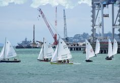 Sailing competition among Dragon Class Sailboats.        Auckland Anniversary Day Regatta & Tugboat Race 2016. Part III ... 17  PHOTOS        ... Auckland's waterfront, Auckland Anniversary Weekend 2016.        More details:         http://softfern.com/NewsDtls.aspx?id=1068&catgry=7            #Waka Ama Action, #Dragon Board Racing