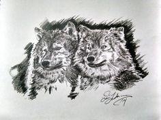 original pencil drawing print of two wolves by Quinn Lockman in DesignandArtwork