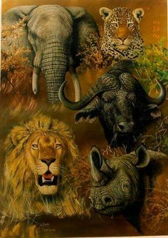 The big five. Jungle Animals, Animals And Pets, Cute Animals, Africa Tattoos, Africa Art, Elephant Love, Animal 2, Tier Fotos, All Gods Creatures