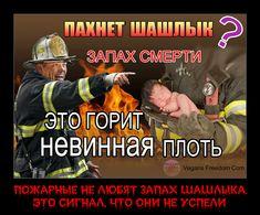Original: https://vk.com/doc223333527_463915116?hash=54da546122156c1188&dl=14b3037a52702de25d