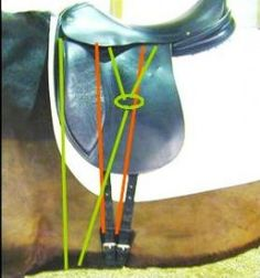 Saddle fitting guide