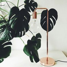 We love the green against the copper Vida table lamp from Denmark. #inspiration #interior #home #style #decor #lighting #zuhause #urbanara