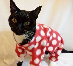 Cat Pajamas Large Polkadot Fleece Cat Pajamas by RockinDogs, $24.00 @Emily Schoenfeld Murtaugh