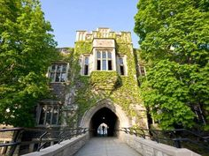 University of Toronto, Hoskin Avenue Walk, ON., A ten-minute walk through this tree-lined slice of U of T's downtown campus offers treasures like Ha... - Getty