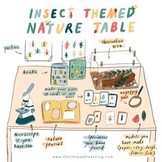 Science Activities For Kids, Nature Activities, Indoor Activities, Educational Activities, Learning Activities, Insect Activities, Ways Of Learning, Learning Through Play, Nature Table