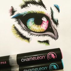 Awesome colourful eye drawing by using their Chameleon Pens! Animal Sketches, Animal Drawings, Animal Illustrations, Pen Art, Marker Art, Colorful Drawings, Easy Drawings, Chameleon Color, Eye Sketch