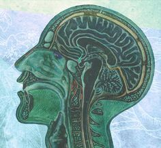 Take advantage of your neurology to sharpen your mental capacity. Here's how.