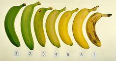 Savez-vous laquelle de ces sept bananes est la meilleure pour vous et votre santé - Santé Nutrition