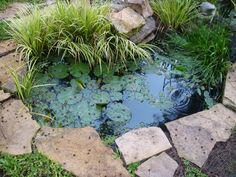 Pond Garden Ponds, Garden Fountains, Pond Water Features, Garden Insects, Natural Pond, Water Gardens, Dream Garden, Landscape Architecture, Beautiful Gardens