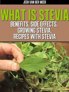 What is Stevia? - Benefits, Side Effects, Growing Stevia, Recipes with Stevia by Jeen van der Meer, http://www.amazon.com/gp/product/B0081G0E0Q/ref=cm_sw_r_pi_alp_NNARpb10HAAMJ