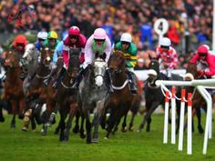Following the racing tips from the tipsters in UK will definitely bring you closer to winning the betting money. So, don't take a chance. Follow the tips and be a winner.