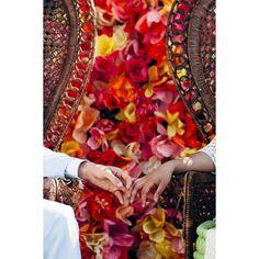 Shiny happy people holding hands 🎵  #elapoppies #holdinghands #loveislove #moments #weddingday #ceremony #bohowedding #emakbakea