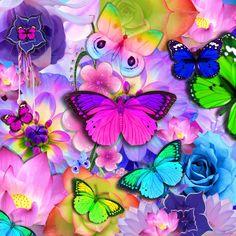 borboletas de todas as cores