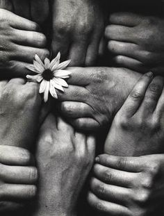 Michel Joly - Hands and Flowers France, 1972