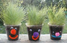 Little Stars Learning: Seeds, Seeds, Seeds! Book Activity #5 Grass Heads