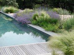 Bord de piscine à envisager... mais moins près de l'eau - sinon bonjour le…