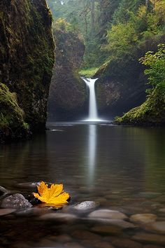 Punch Bowl Falls - Columbia River Gorge National Scenic Area, Oregon, about 41 miles east of Portland, Oregon. Go to www.YourTravelVideos.com or just click on photo for home videos and much more on sites like this.