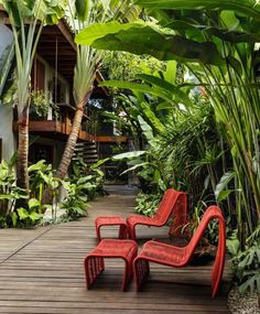Tropical garden ideas, tips and photos. Inspiration for your tropical landscape Tropischer Garten Ideen, Tipps und Fotos. Tropical garden ideas, tips and photos. Inspiration for your tropical landscape . Tropical Garden Design, Tropical Backyard, Tropical Landscaping, Backyard Landscaping, Landscaping Ideas, Patio Ideas, Terrace Ideas, Tropical Gardens, Landscaping Software