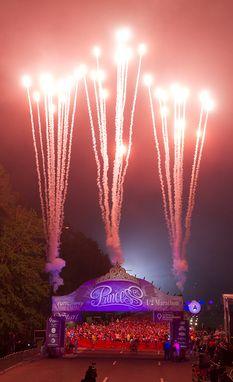 2014 Princess Half Marathon recap