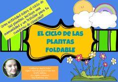 Gran actividad sobre el ciclo de las plantas, incluye una manualidad y un trifolio para tu cuaderno de Ciencias Naturales!!