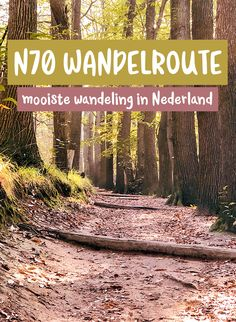 De wandelroute: wandelen in Berg en Dal - Stripe Away Hiking Europe, Nature Adventure, Water Activities, Best Hikes, Ultimate Travel, Staycation, Worlds Of Fun, Outdoor Travel, Where To Go
