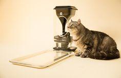 La ciotola biometrica per il tuo gatto