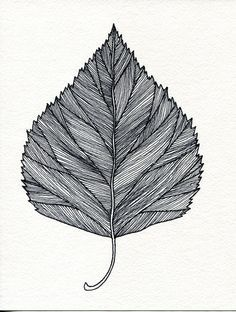 leaf pen drawing - Google Search                                                                                                                                                                                 More