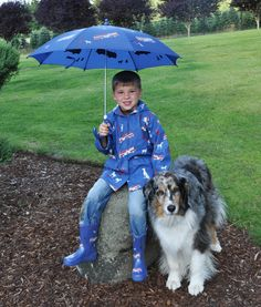 How To Make A Dog Raincoat From An Old Umbrella
