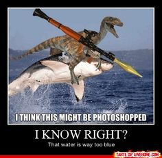 Ok ok wait.....OMG THIS MAKES TOTAL SENSE! So the Velociraptor has escaped from Jurassic park and stole the weapon from one of the guards. He then jumped on the sharks back so he could swim to freedom! But uh....yeah. That water was photoshopped. :D
