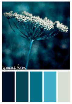 Gold On The Ceiling: Queens Lace color palette Colour Pallette, Colour Schemes, Color Patterns, Color Combos, Silver Color Palette, Blue Palette, Color Concept, Color Balance, Design Seeds