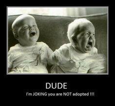 Funny Jokes | 13 #Funny #Jokes for your kids