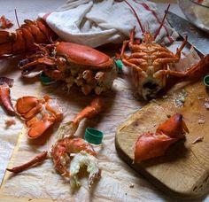 Lobster Season please