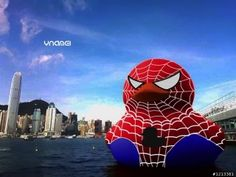 Spider Duck by ynamei@Mobile01