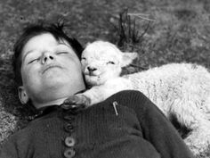 A boy and his little lamb taking a nap.