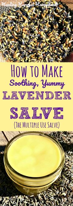 Lavender salve, made with oils infused with lavender buds and lavender essential oil, is an incredibly useful gift that your friends and family will appreciate so much! Here is my recipe and directions for how to make lavender salve, quickly and easily! Natural Health Remedies, Herbal Remedies, Holistic Remedies, Diy Cosmetic, Salve Recipes, Beeswax Recipes, Lavender Buds, Growing Lavender, Lavender Garden