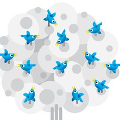 tollowers.com is the leading supplier of social media services. we offer guarantee delivery and after sales suport.