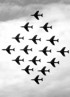 BLACK ARROWS Hawker Hunter Aerobatic Team --- yet another peek at their perfect 'Diamond' Military Jets, Military Aircraft, Sky Images, Red Arrow, Royal Air Force, Air Show, Historical Pictures, Fighter Jets, Pure Products