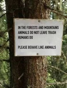 Behave Like Animals