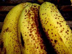 A banana é uma fruta muito deliciosa que deveria ser incluída, de forma mais frequente, em nossa dieta, não apenas pelo seu agradável sabor, mas também porque está comprovado que contém