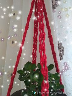 Cords, Plant Hanger, Macrame, My Etsy Shop, Unique Jewelry, Handmade Gifts, Plants, Check, Cotton