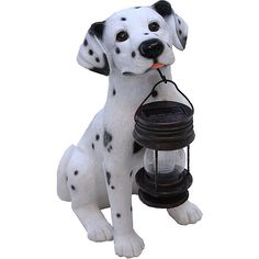 Tricod Dalmation with Solar Light Lantern ($34) ❤ liked on Polyvore featuring home, home improvement and black