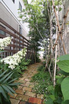 シェードガーデン / ナチュラルガーデン / ガーデンデザイン / 外構 Garden Design / Shade Garden