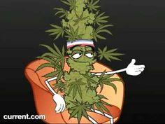 Marijuana VS. Crystal Meth - Funny but true video - YouTube