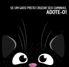 Fica Cãomigo: Gatos em P&B - Yin & Yang Cat Colors, Dog Hacks, Cute Funny Animals, Illustrations And Posters, All Dogs, Pet Shop, I Love Cats, Cute Cartoon, Cat Art