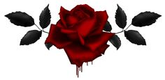 bleeding_rose_by_kittyscorpianoa-d7rg6vg.png (1279×625)
