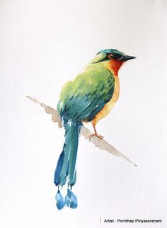 Trinidad Motmot Bird Painting , Blue-crowned Motmot Bird, Art print size inch for room décor and special gift Art Watercolor, Watercolor Animals, Bird Illustration, Watercolor Illustration, Bird Drawings, Animal Drawings, Disney Stich, Texture Art, Animal Paintings