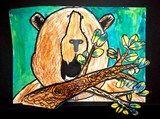Bears out of Hibernation