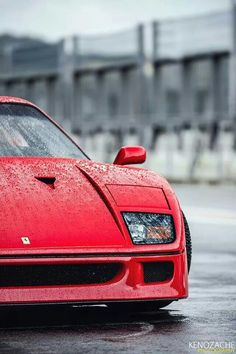 Amazing Photography from Around the World - Cool Pics HQ Ferrari F40, Lamborghini Gallardo, Maserati, Vintage Sports Cars, Vintage Cars, Supercars, 60s Muscle Cars, Top Cars, Car Wallpapers