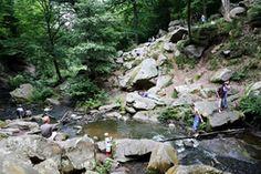 En balade au cœur du parc naturel régional de la Haute Vallée de Chevreuse